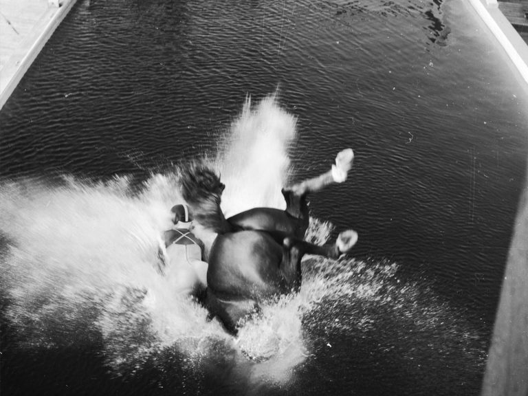 The High-Diving Horses That Risked Death Every Day to
